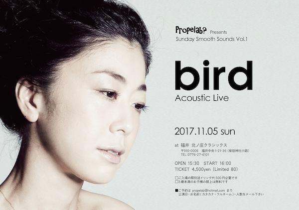20171105bird