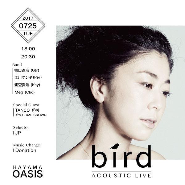bird_oasis2017_flyerのコピー