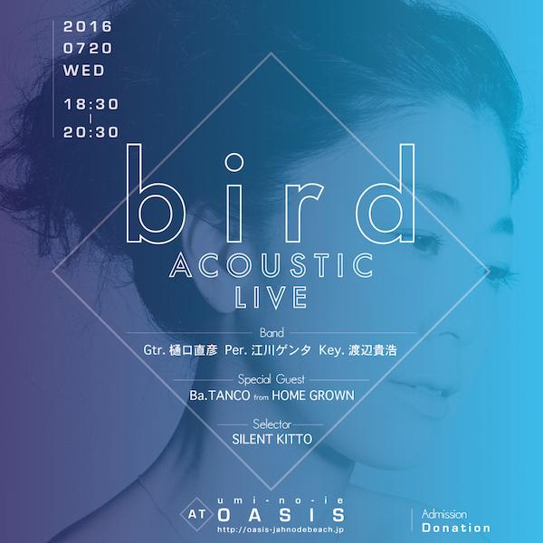 bird-oasis-insta